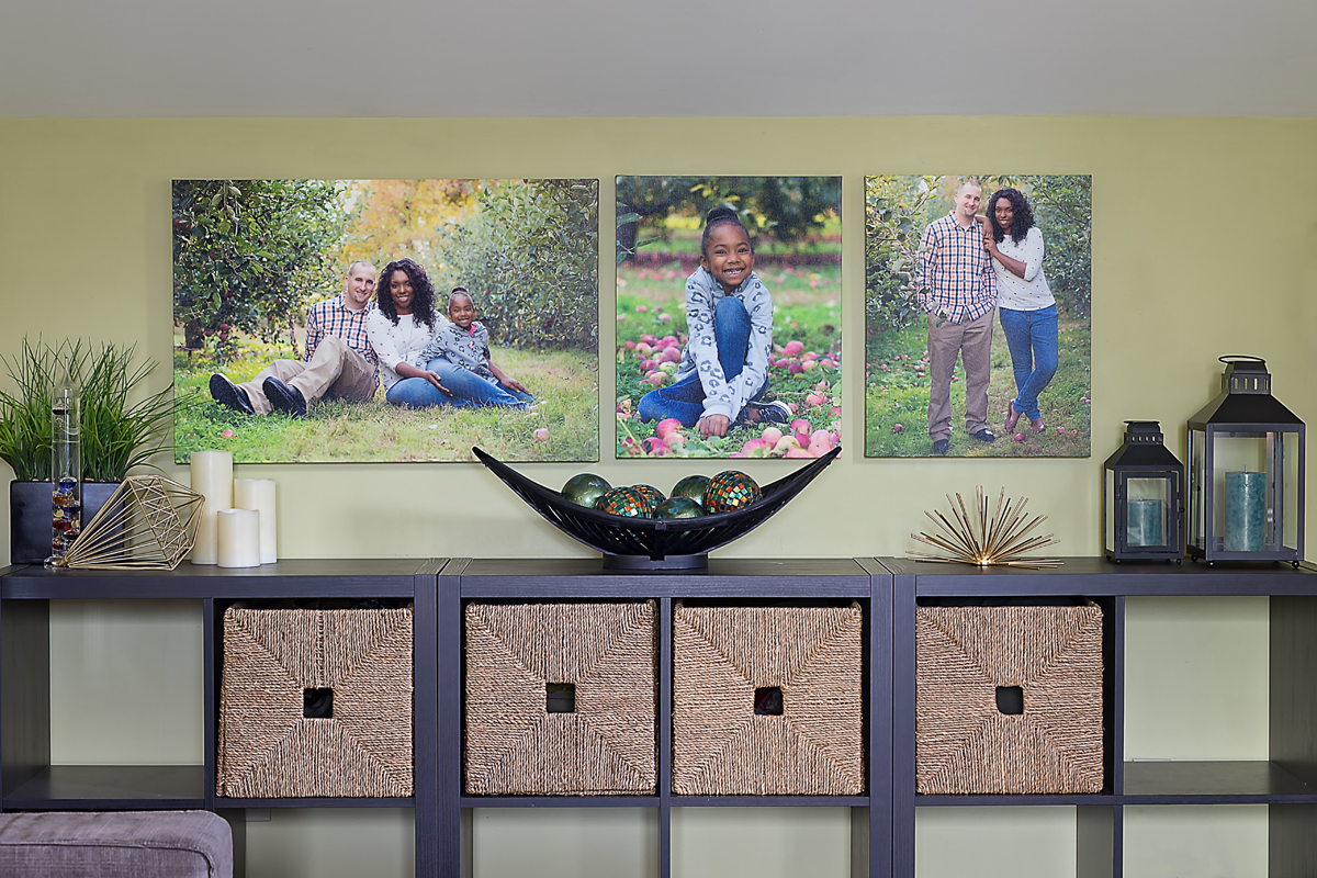 Family Portaits Canvas Wall Grouping